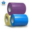 Galvanized Color Coated Steel Coil for Construction